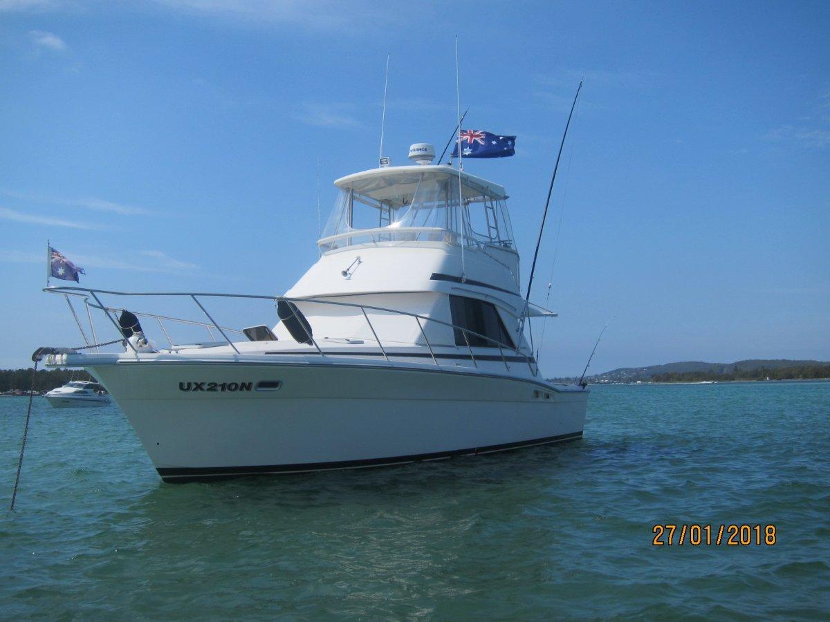Riviera 36 Flybridge Hardtop Cruiser