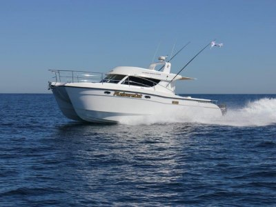 Leisurecat 3500 Sports Express