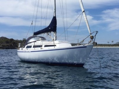 Lidgard 34 NZ Kauri SUPERBY BUILT