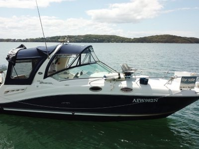 Sea Ray 275