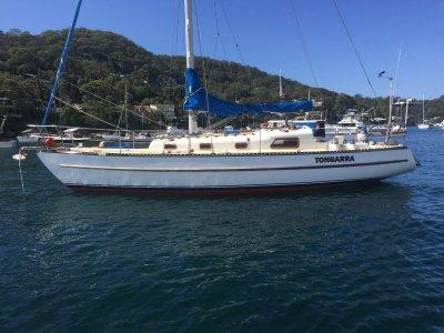 Swanson 36