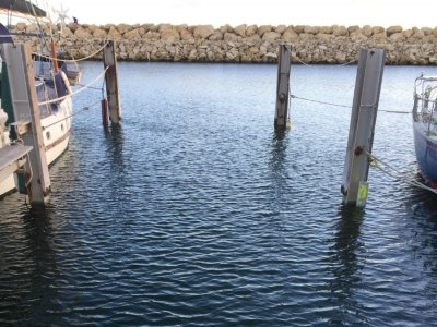 15m Pen available for lease and/or sale at Fremantle Sailing Club