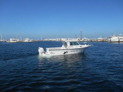 Baha Cruisers 251 GLE suit Boston whaler / wellcraft buyers
