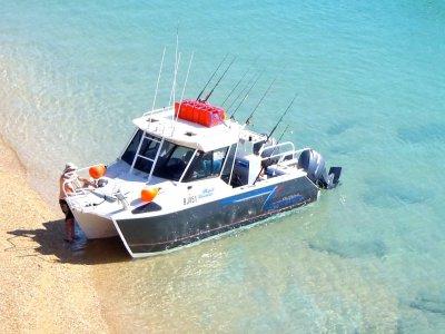 Sailfish Catamaran