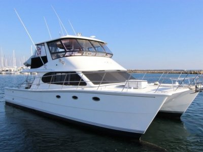 Brava 45 Power Catamaran- Click for more info...