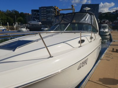 Chaparral 290 Cruiser Family Sports Cruiser