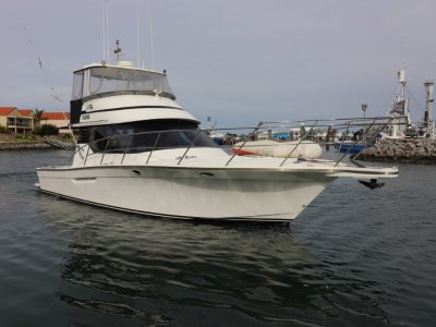 AM4000 Flybridge Sports Fisher