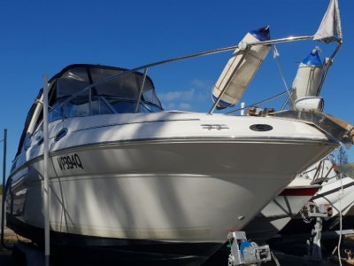 Sea Ray 275 Sundancer Family Sports Cruiser on a trailer