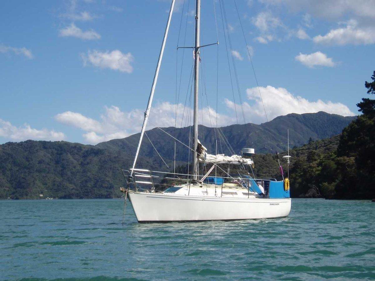 Davidson 35 Offshore