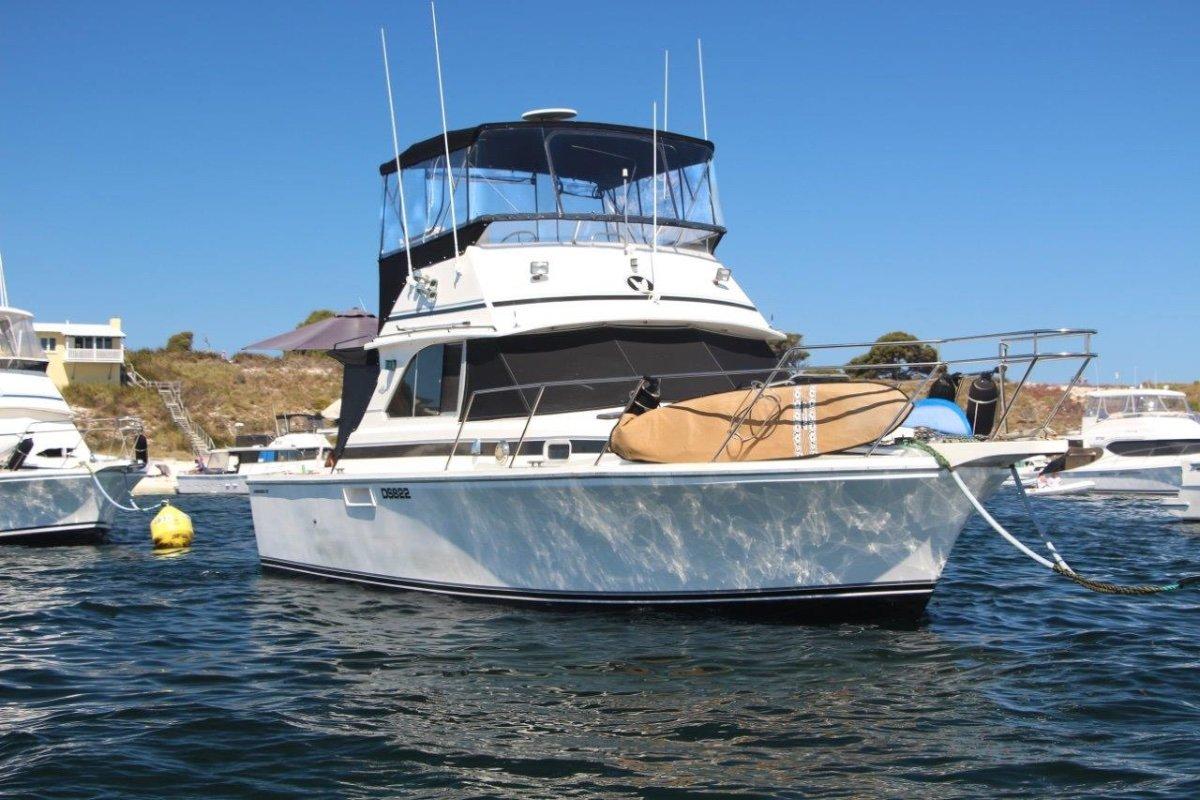 Bertram Caribbean 35 Perfect Rotto boat in Hillarys pen:At Rotto