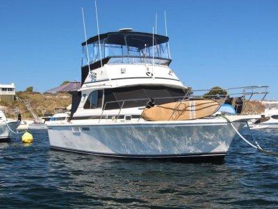 Bertram Caribbean 35 Perfect Rotto boat in Hillarys pen