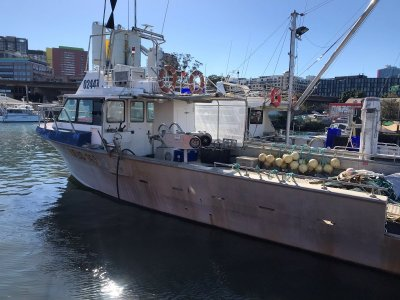 Star Aluminium Fishing 1985 Star Boat Trap and Line Vessel 14.1m
