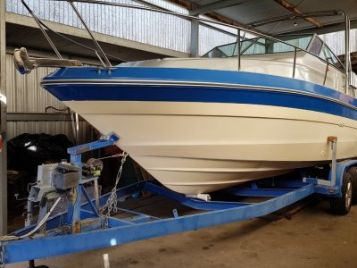 Sea Ray 230 On
