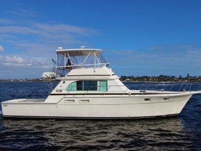 Caribbean 45 Flybridge Cruiser - Immaculate Bertram Caribbean