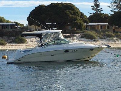 Sea Ray 315 Amberjack