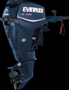 Evinrude Etec 30hp Tiller Clearance for Sale | Boat Accessories