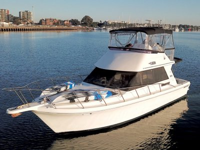 Mustang 3800 Flybridge Cruiser