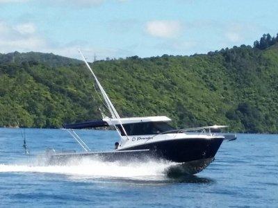 Dickey Boats Custom 800