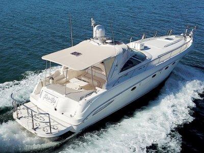 Sea Ray 515