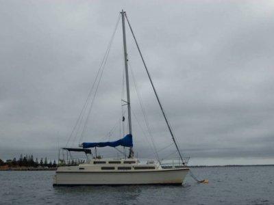 Imp 33 Catamaran
