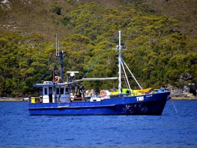 Martin 50ft CONVERTED Fishing Trawler