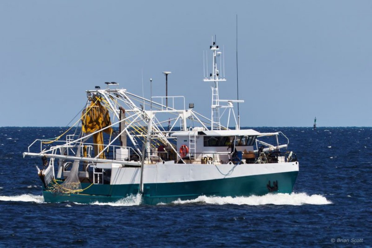 Prawn Trawler: Commercial Vessel | Boats Online for Sale | Steel