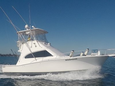 Luhrs 40 Convertible