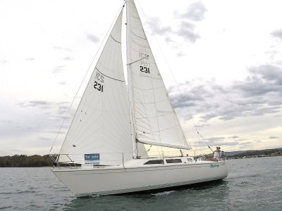 Northshore 31