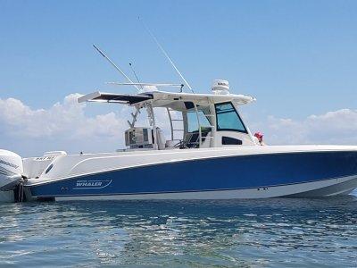 Boston Whaler 370