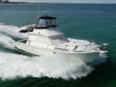 Randell 38 Flybridge Cruiser - Reliable cheap boating with late model engines