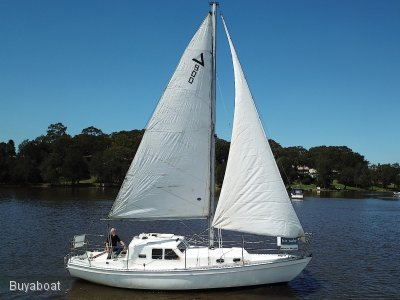 Compass 29 New Model