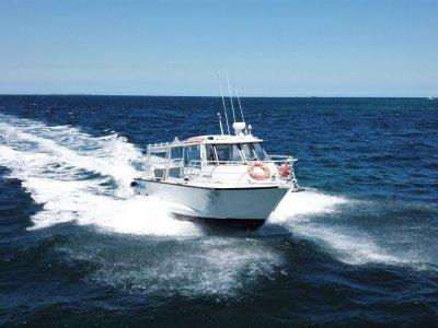 Seaquest Charter