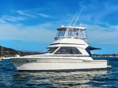Riviera 34 Flybridge Cruiser