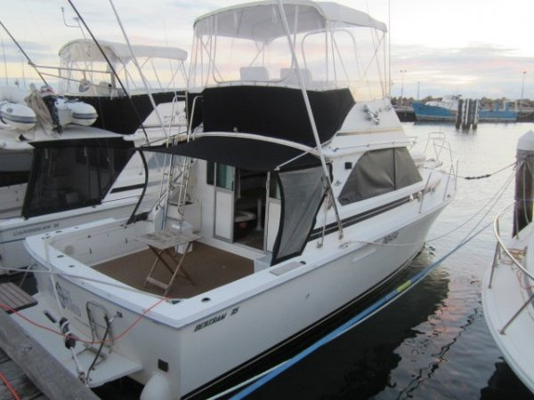 Bertram 35 Flybridge (Caribbean) - Out of water viewing from 6/11