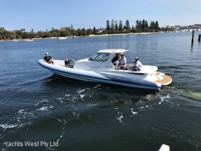 Cougar RIB with Cabin