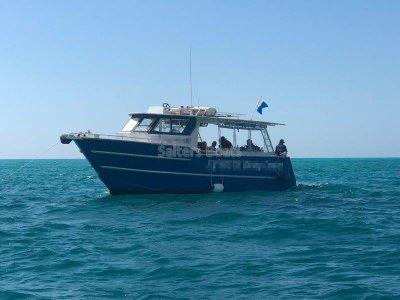 Elite 10m Charter Vessel