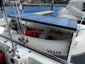 Grainger 40 Bluewater Catamaran Professionally Built GREAT VALUE