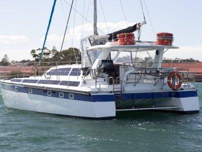 Chamberlin Performance Cruising Catamaran 12.0