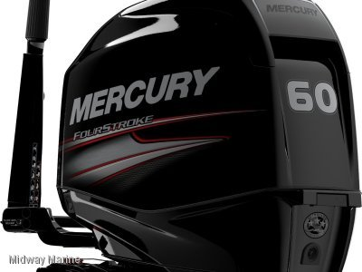 New Mercury 60hp