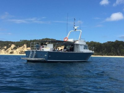 Randall Boats For Sale in Australia | Boats Online