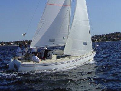 Swarbrick S80