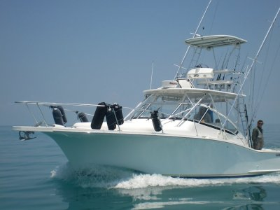 Luhrs 31 Open Tower