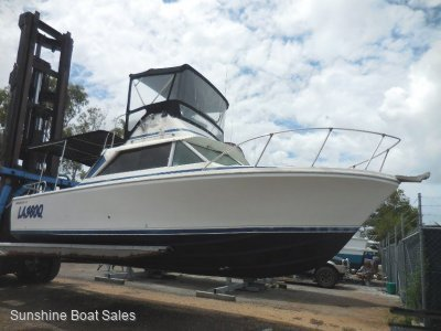 Bertram 25 Flybridge