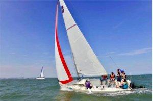 NEW BUILD - 8m Sport Sailing Yacht