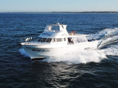 Conquest Charter 65 - FULL CHARTER BUSINESS