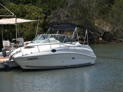 Sea Ray 240 Sundancer 2009 50th Aniversay