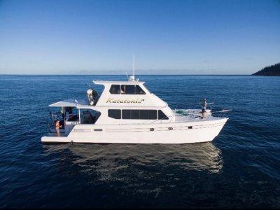 Coral Coast Power Catamaran 16M Flybridge