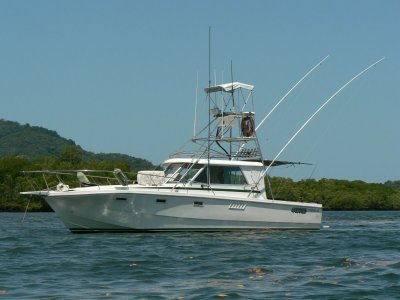 O'Brien 33 Game Fisher- Click for more info...