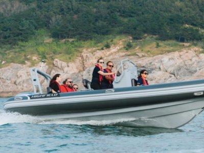 Highfield Patrol 600 PVC | Port River Marine Services