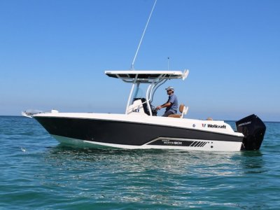 Wellcraft 222 Fisherman With Mercury 225Hp V6